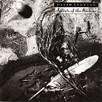 Sylvian, David - Secrets of The Beehive (CD)